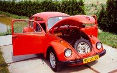 VW Beetle 1972 (with open doors and hood)